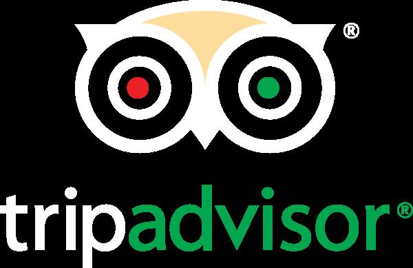 company_tripadvisor